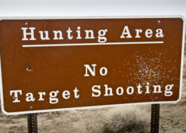 Why Were Hunting Laws Passed?