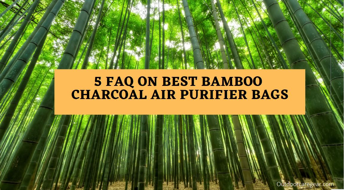 Top 5 FAQs On Best Bamboo Charcoal Air Purifier Bags